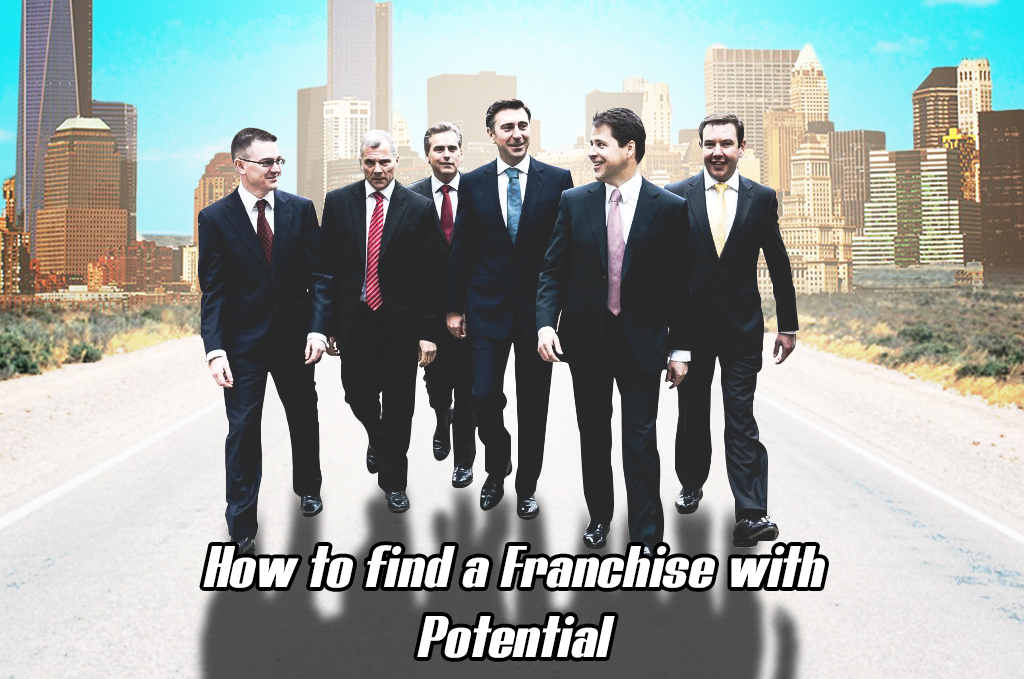How_to_find_a_franchise_with_potential